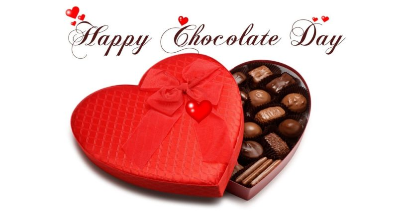 Download Chocolate Day Special WhatsApp Status Video for Gf