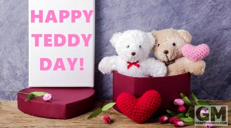 Download Teddy Day Status Video – Status Video Song
