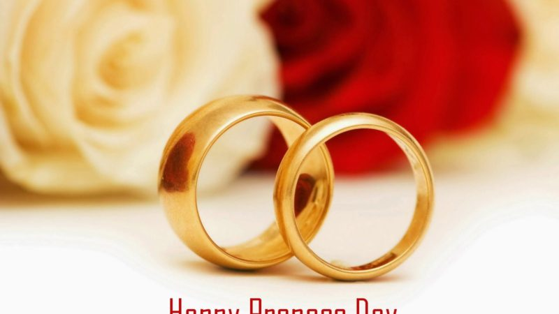 Download Happy Propose Day 2020 Specials Romantic Status Video