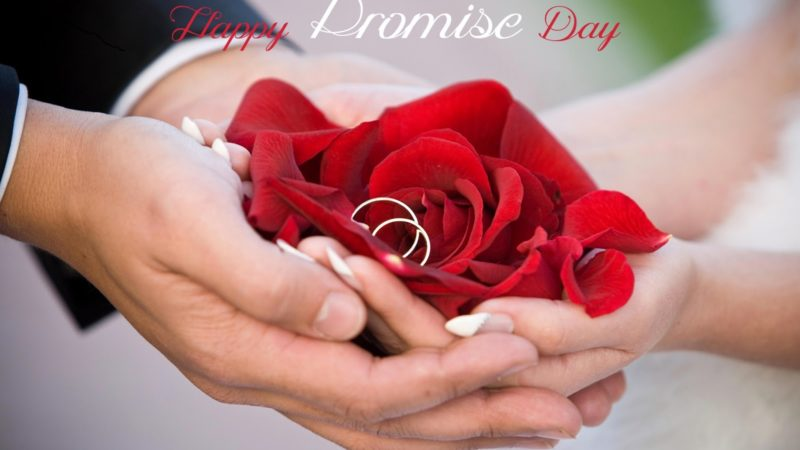 Shayari Song – Happy Promise Day Status Video Download