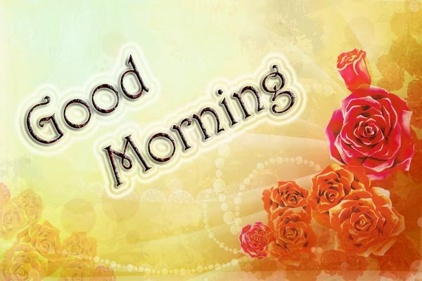 New Good Morning Video For Whatsapp Download